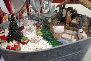 Winter Fairy Garden Workshop