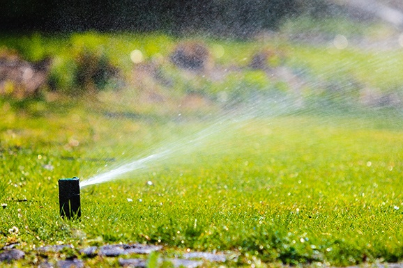 Services_Irrigation