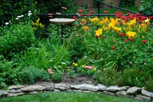 Planning a Perennial Garden