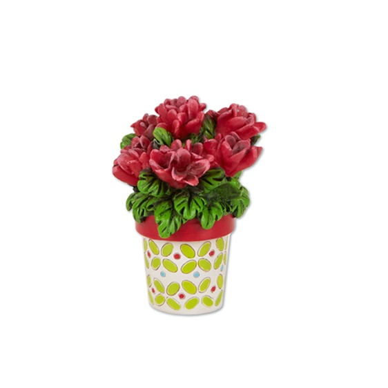Merriment Mini Potted Geraniums