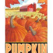 Pumpkin field flag
