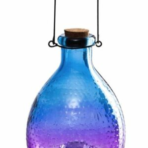 Glass Wasp Catcher Blue