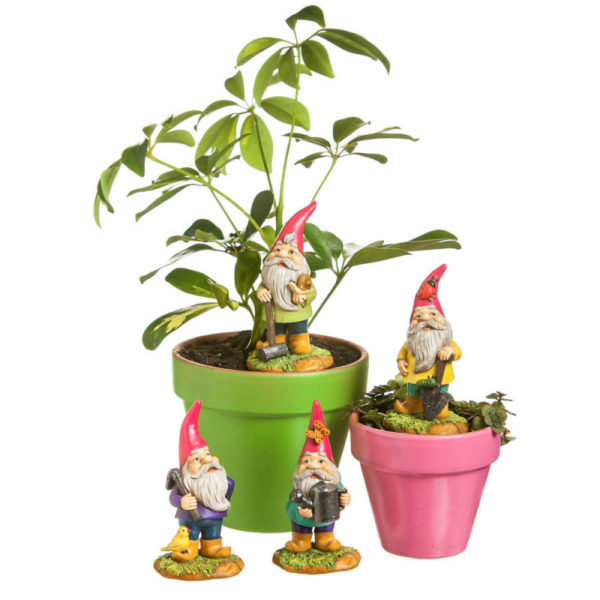 From the Forest Mini Garden Gnomes