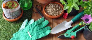 lawn and garden checklist