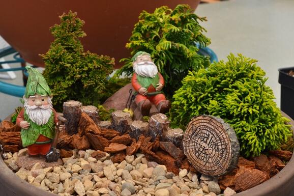 Themed Fairy Gardening
