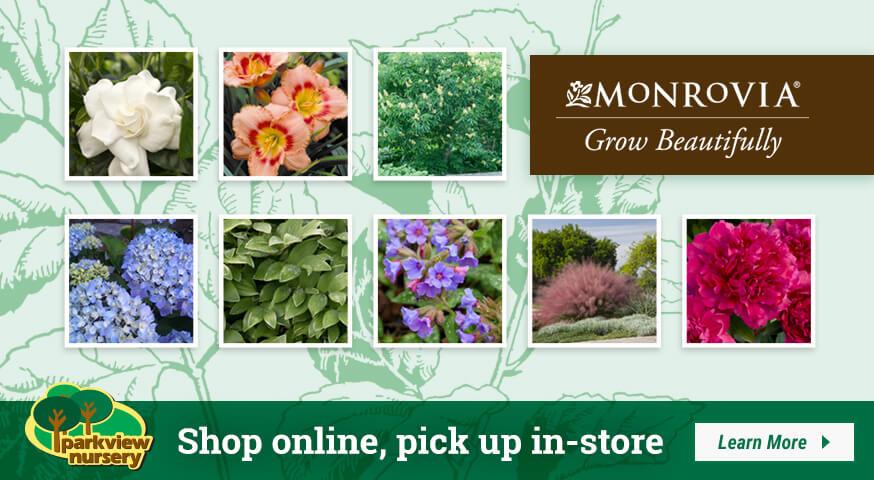 Shop Monrovia