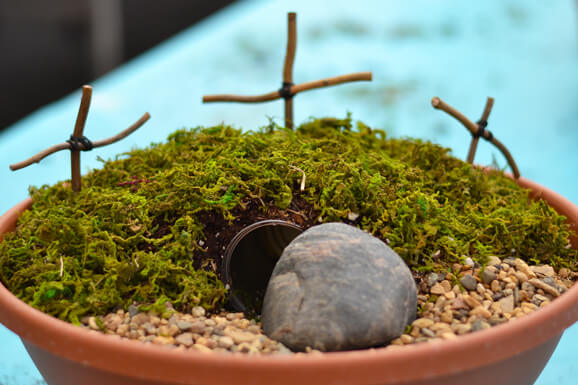 Resurrection Gardens