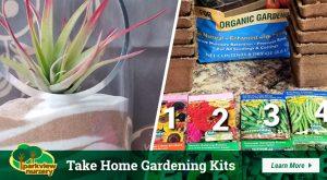 Take Home Gardening Kits